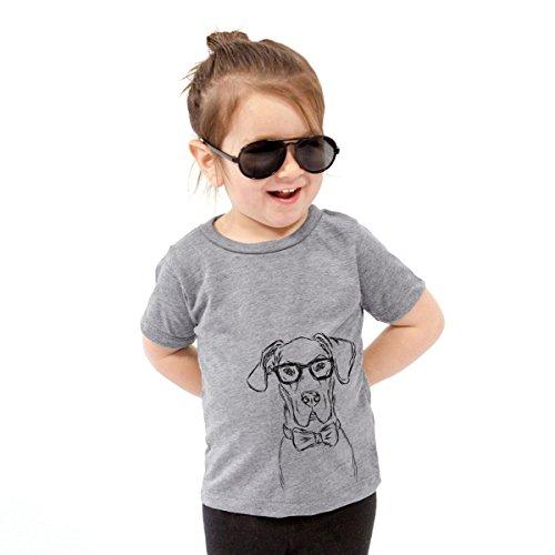 Harvey The Great Dane Dog Youth Unisex Boy Girl Kids Crewneck Youth Small Grey