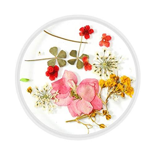 VICKY-HOHO 3D schöne Blume gemischt getrocknete Blumen Nail Art DIY Flasche Maniküre Tipps Dekor Gesundheit und Schönheit Nail Art