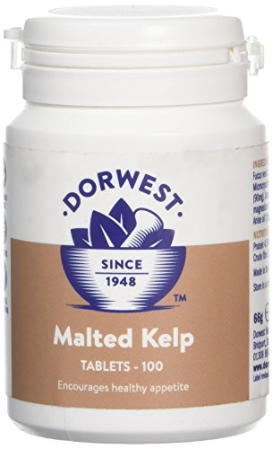 DORWEST HERBS Malted Kelp Tablets for Dogs and Cats 100 Tablets