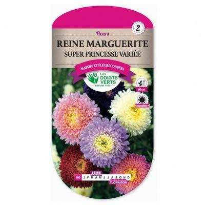 Les Doigts Verts - Graines Reine Marguerite Super Princesse Variée - Les Doigts Verts