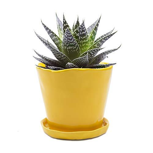 Chive – Grande Tika, grande vaso per piante grasse e cactus e piattino in ceramica per fiori e piante con foro di drenaggio e piattino rimovibile, ideale per interni ed esterni, N9000 Iii, 5 inches