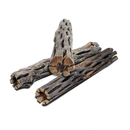 SunGrow Cholla Wood for Shrimp, 6 Inches Long, Dried Husk of Cholla Cactus, Excellent Food Source, Aquarium or Home Decor, for Dwarf Shrimp, Hermit Crabs, Pleco, 3 Pack