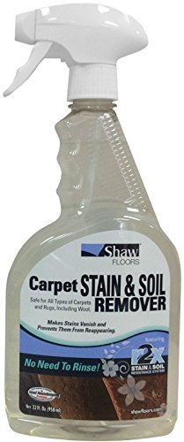 Shaw R2X Carpet Stain & Soil Remover 32 Ounces Spray by Shaw