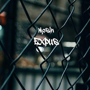 Expus