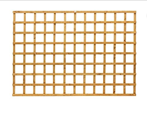 Innovo 6 foot x 3 foot Square Garden Trellis Screen Pressure Treated Heavy Duty