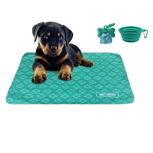 Puppy Housetraining Pads