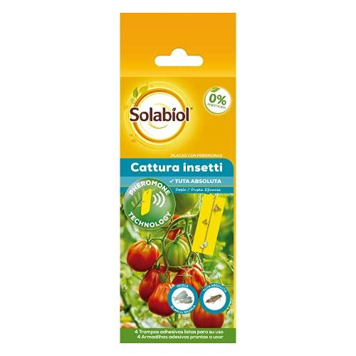 Placa con feromonas Tuta Absoluta para el control de las principales plagas del tomate y otros cultivos