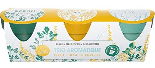 La Chaise Longue 37-1J-011 Trio Aromatique Persil Thym Ciboulette Set de 3 pots assortis Avec graines plantes