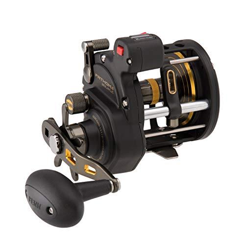 PENN Fishing FTHII30LWLC Spinning Rod & Reel Combos, Black Gold (1481313)