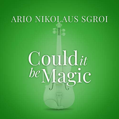 Ario Nikolaus Sgroi