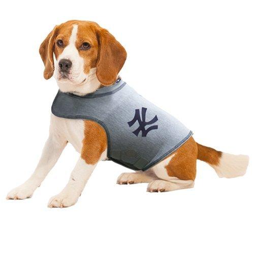 Thundershirt Dog Anxiety Polo Shirt