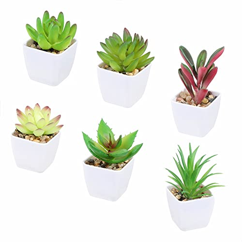 Tifuly 6 Piezas de Plantas suculentas Artificiales en macetas, suculentas pequeñas realistas Planta de vegetación Falsa con Maceta de melamina para la decoración de la Escuela en el hogar (Juego 3) ⭐