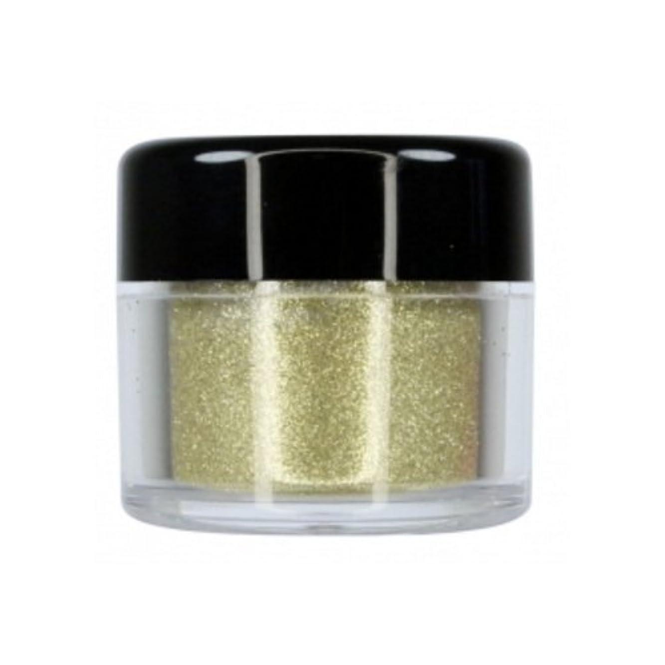 ベックス設計図フィット(3 Pack) CITY COLOR Sparkle & Shine Ultra Fine Loose Glitter - Sparkler (並行輸入品)