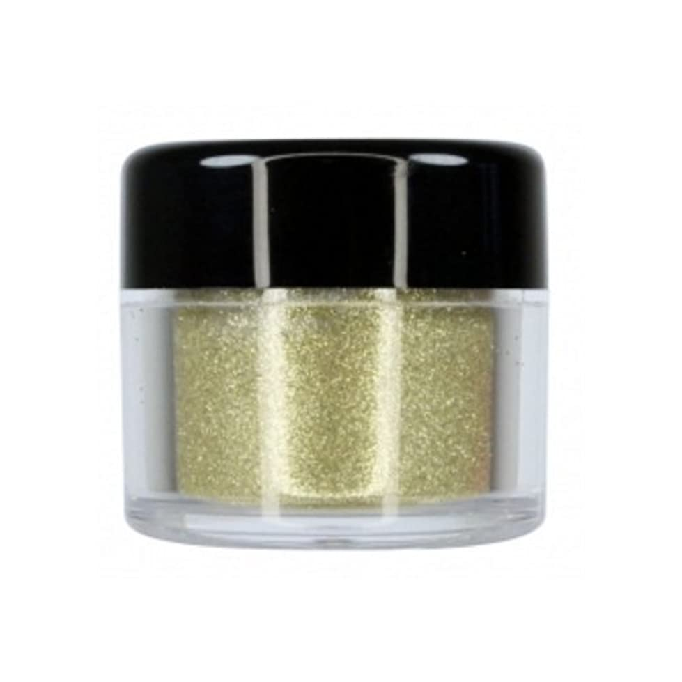 ギター海藻信頼(6 Pack) CITY COLOR Sparkle & Shine Ultra Fine Loose Glitter - Sparkler (並行輸入品)