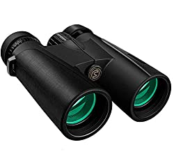 Compact Low Light Binoculars