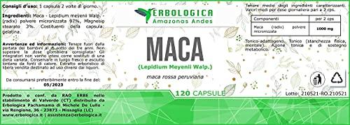 Maca rossa 120 capsule | Maca peruviana integratore sessuale naturale | Energizzante integratore e Integratore stanchezza naturale - Erbologica Amazonas Andes