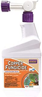 Bonide 813 Fungicide, Clear