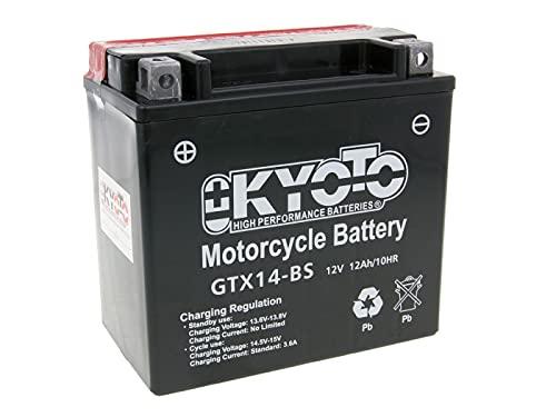 Batteria moto Kyoto GTX14-BS (YTX14-BS) - Pronta all'uso - 12 V 12 Ah - Dimensioni: 150 x 87 x 147 mm compatibile con Malaguti SPIDERMAX RS 500 2008