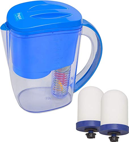 Propur Fruit and Vegetable Infusing Water Filter Pitcher Bundle with 2 Propur ProOne M G2.0 Mini Filter Element
