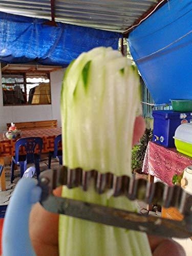 Thai Tools Kitchen Peel Papaya Vegetable & Fruit Diamond Brand Scraper Shredder Hand Hold Easy