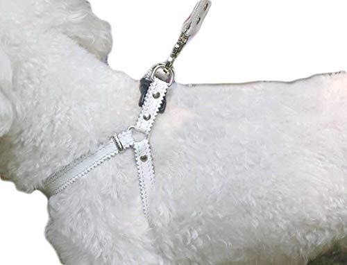 feiling Hundegeschirr Kleine Hunde Leder Verstellbar Hundegeschirr Welpen Brustgeschirr Haustier Ausbruchsicher Katzengeschirr Ledergeschirr Weichem mit 1.3m Hundeleine Leder (Weiß)