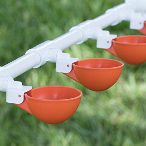 Backyard Flock Expansion Pack for The Oasis Poultry Watering System (Sold Separately) - 4 Cups (Orange) with PVC Tee Fittings