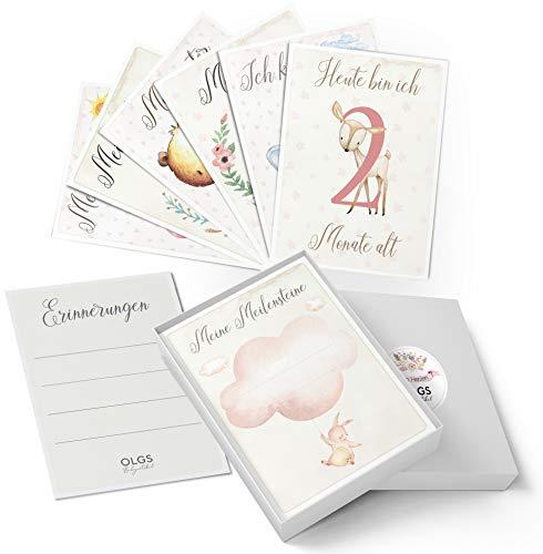 40+1 Baby Meilenstein Karten schöne Geschenkidee zur Geburt, Schwangerschaft, Taufe oder Babyparty Milestone Cards | Meilensteinkarten Geschenkset inkl. Geschenkbox für Mädchen