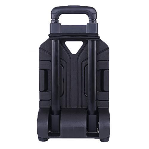 WSI Sackkarre Bollerwagen - 50kg Tragkraft - Ausziehbarer Griff - Platzsparend faltbar - Optimal geeignet für Ausflüge & Festivals/Handwagen/Transportwagen/Strandwagen, 30 * 38 * 96cm, schwarz