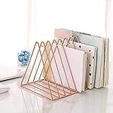 Sooyee 9 Slot Rose Gold Magazine Holder,Desktop File Sorter Organizer Triangle Bookshelf Decor Home Office