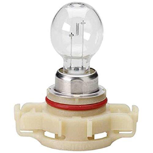 Standard Light Bulb - Multi-Purpose