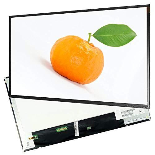 Display für Lenovo Essential G700 20251 17.3