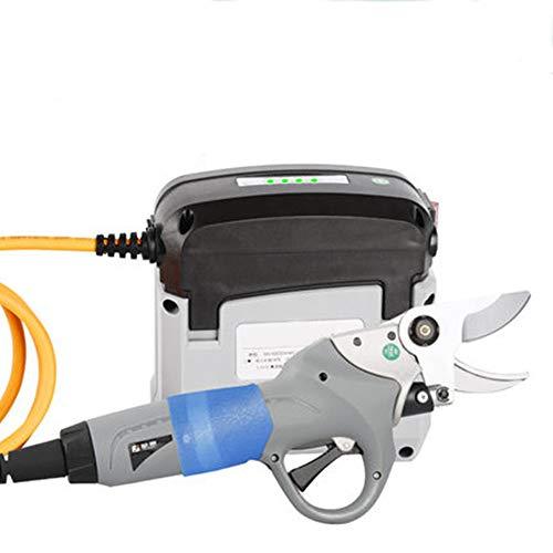 CGOLDENWALL Sécateur électrique robuste pour branches de fruits et arbres - Rechargeable - 45 mm