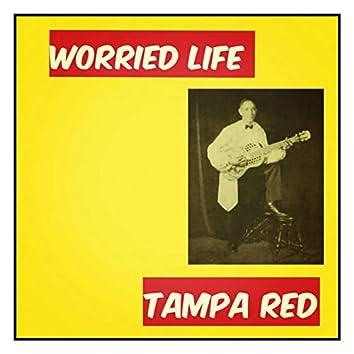 Worried Life