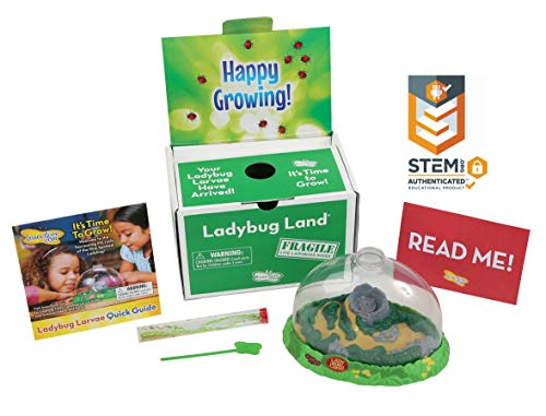 Insect Lore Ladybug Land with Live Larvae - Life Science & STEM Education