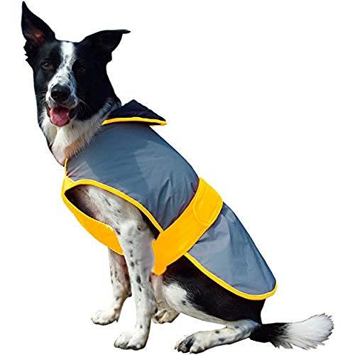 Equisafety Mercury Hundedecke, Größe XL, Gelb