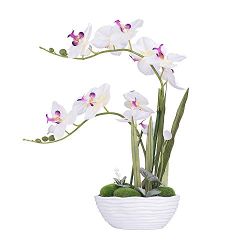 Yszl Large Artificial Potted Orchid Plant Silk Flower Arrangement With Ceramics Vase White