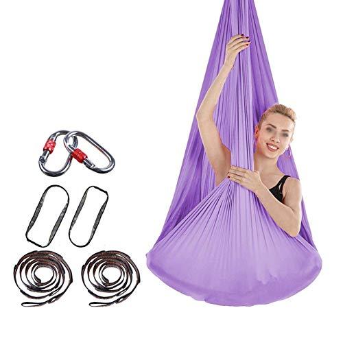 LKITYGF Alegre Silla Relajante Antena Yoga Hamaca Saludable Seda Seda Yoga Columpio antigravedad Yoga Mejorado flexibilidad Hierba Verde (Color : Purple)