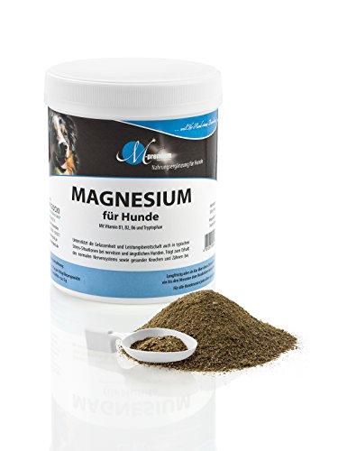 MIGOCKI Magnesium – 250 g – Premium Ergänzungsfuttermittel für Hunde – Unterstützung des gesunden Nervensystems für mehr Gelassenheit – Fördert einen lockeren Muskeltonus, gesunde Knochen und Zähne