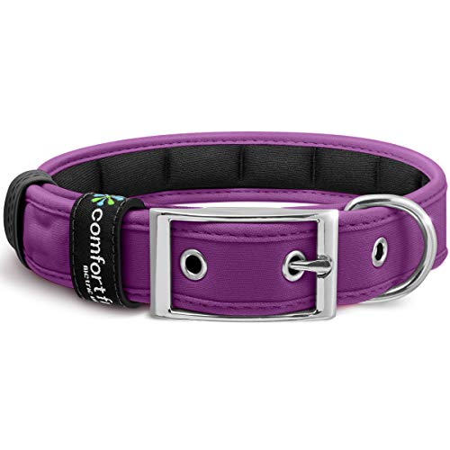 Metric USA Comfort Fit Soft Padded Dog Collar for Small Medium Large Dogs with Buckle Adjustable Comfortable Pet Collar, Purple, Large (14.5