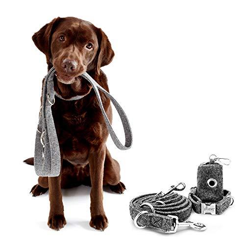 PiuPet® Hundeleine Set mit Halsband, Leine (2m) und Kotbeutelspender, Stilvolle Hunde Leine mit Hundehalsband und Hundekotbeutel Spender | Größe S/M (Halsumfang 33-40cm)