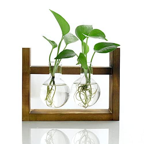 Ivolador Glas Vasen Terrarium mit Retro Holz Stand Blumenvase für Hydroponik Pflanzen Home Küche Desktop Tisch Indoor Garden Wedding Decor (2 Bulb Vase)