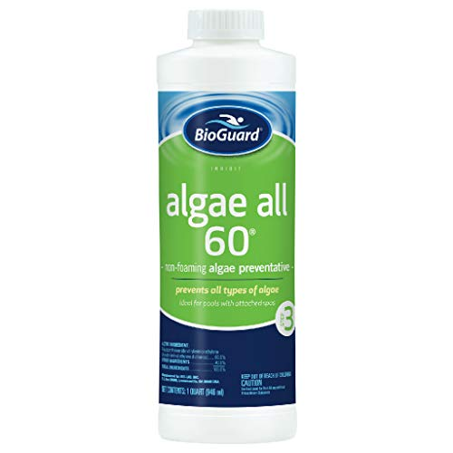 BioGuard Algae All 60 Pool Algaecide