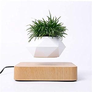 Levitating Air Bonsai Pot Rotation Flower Pot Planters Magnetic Levitation Suspension Floating Pot Potted Plant Home Desk Decor in Flower Pots & Planters from Home & Garden on (Dark wood)