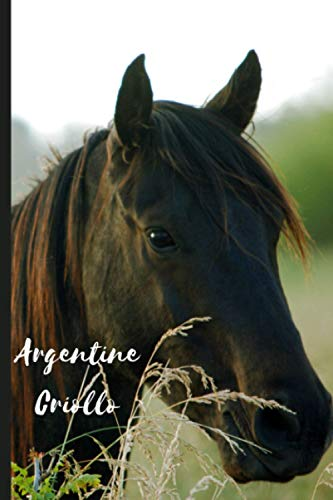 Argentine Criollo: Journal and Notebook - Composition Size (6'x9') With 120 Lined Pages, Perfect for Journal, Doodling, Sketching and Notes