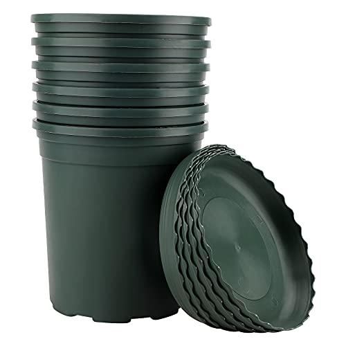 Macetas de plástico con platillo,6 Juegos de macetas de plástico para Plantas de 16 cm con...