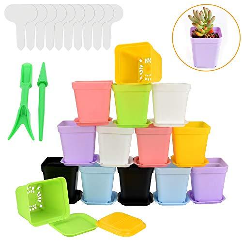 AFASOES - 14 vasi da fiori quadrati colorati in plastica con sottovaso, altri strumenti per la coltivazione di piccole piante, balcone, ufficio, casa (7,5 x 7 cm, 7 colori)