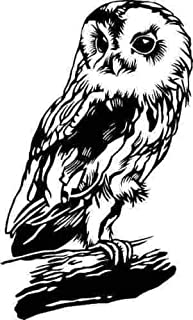 ELKS Unique Design Cute OWL ON A Branch Tree CAR Decal Sticker, Black, 6 Inch, Die Cut Vinyl Decal, for Windows, Cars, Trucks, Toolbox, Laptops, MacBook-virtually Any Hard Smooth Surface