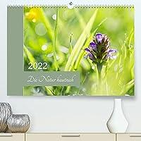 Die Natur hautnah (Premium, hochwertiger DIN A2 Wandkalender 2022, Kunstdruck in Hochglanz): Pflanzendetails - die kleinen Dinge ganz gross. (Monatskalender, 14 Seiten )