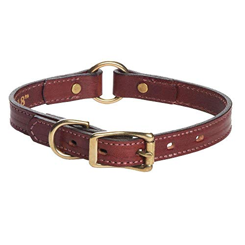 Mendota Pet Leather Hunt Collar - Dog Collar - Made in The USA - Chestnut, 1 in x 22 in (Wide)