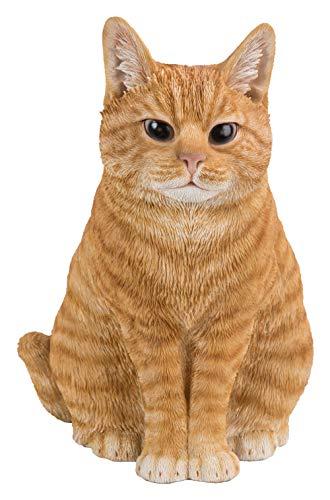 Vivid Arts, gattino rosso seduto dall'aspetto reale